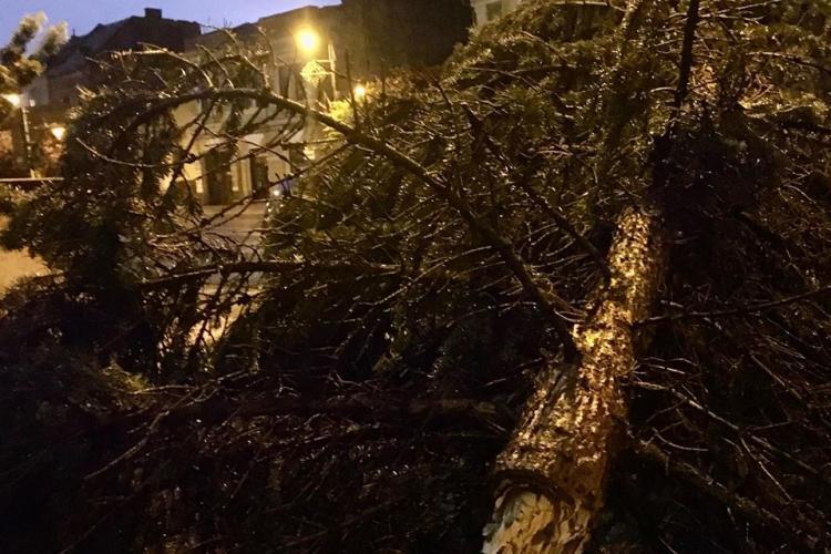 Turda a fost lovită de furtuna de sâmbătă seara. Vijelia a rupt brazii - FOTO