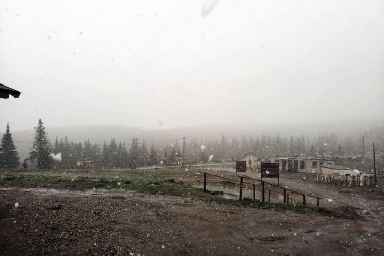 Ninge ca în povești la Buscat - FOTO