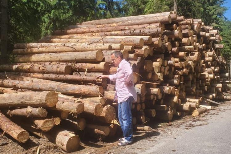 """Actorul Claudiu Bleonț, candidat la primăria Beliș: """"Se fură pădurea"""". Dă și nume și locurile defrișate"""