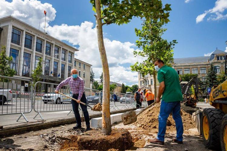 Primarul Emil Boc spune că arhitectul a scos copacii plantați de el și că avea un motiv ÎNTEMEIAT - FOTO