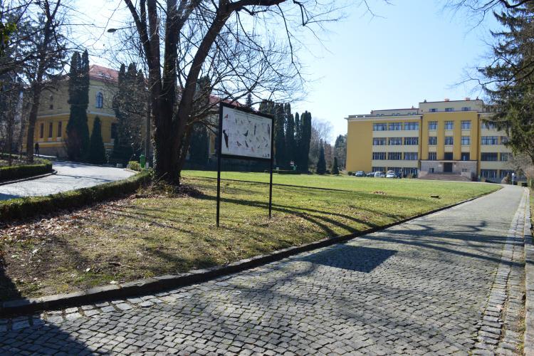 Cum se va studia la USAMV Cluj! Cursurile vor fi online, dar căminele vor fi deschise