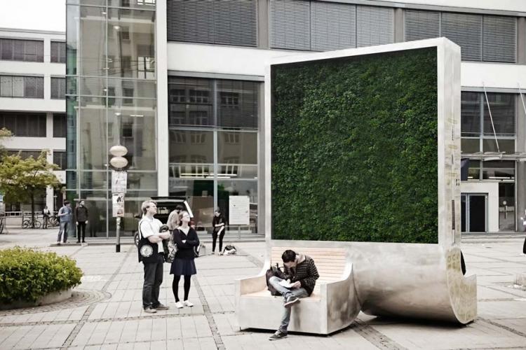 La Cluj se cumpără panouri de mușchi City Tree, care respiră și curăță aerul, în loc să se planteze copaci - FOTO