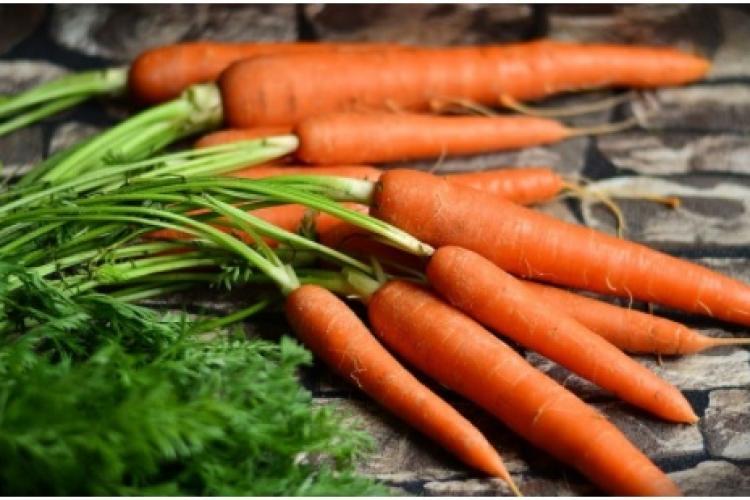 Cultivarea morcovului – sfaturi utile pentru plantare și îngrijire