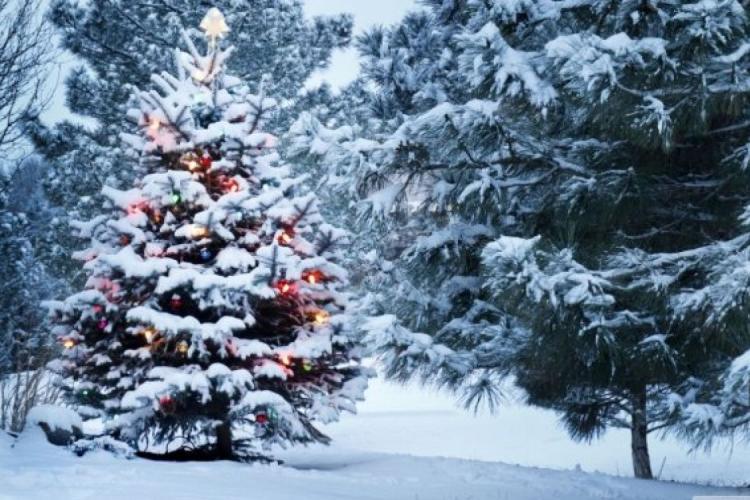 Vremea de Crăciun 2020: Meteorologii spun cum va fi vremea de Crăciun