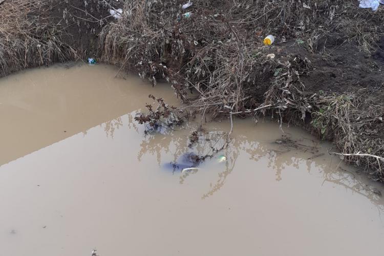 Clujean găsit mort într-o baltă din propria gospodărie FOTO