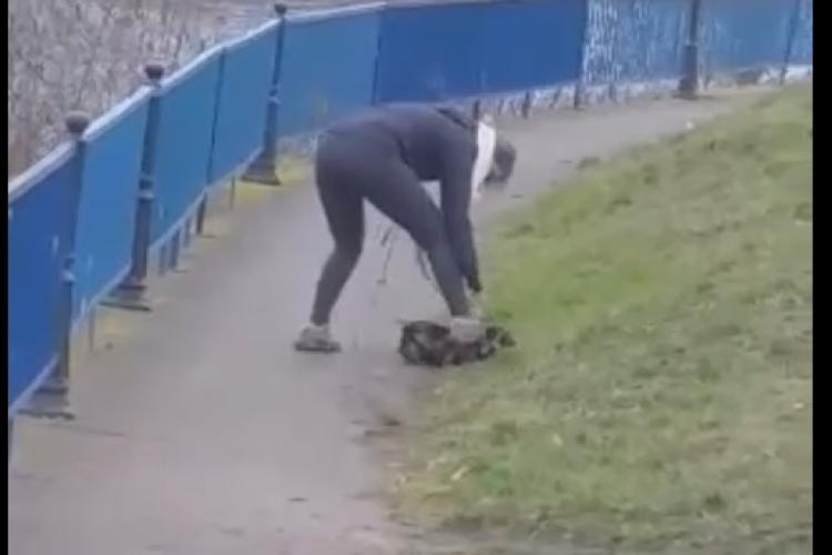 Clujeancă își bate, maltratează și calcă în picioare câinele pe malul Someșului! Imagini ȘOCANTE - VIDEO