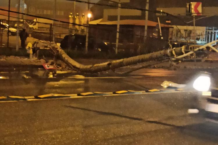 Stâlp prăbușit pe Traian Vuia, joi dimineața, într-un mod inexplicabil, fără să fi fost lovit - FOTO / VIDEO