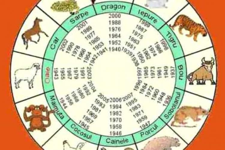 Zodiac chinezesc, luni, 1 februarie 2021 - Cheltuieli neprevăzute se anunță