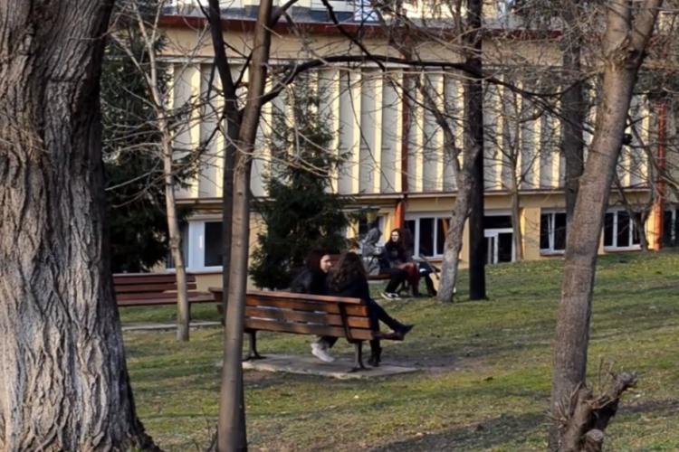 Studenții de la UBB Cluj sunt de acord să se taie copaci din Hașdeu pentru a se face un cămin