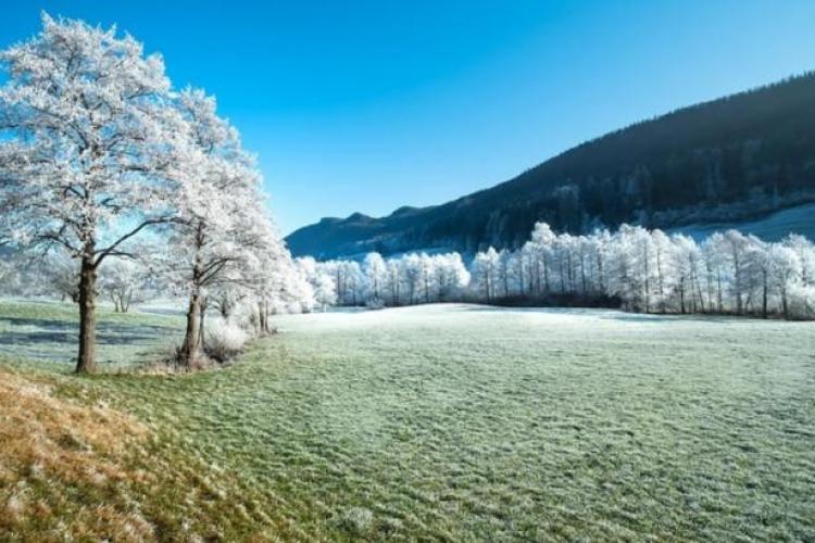 Cum va fi vremea în februarie. Elena Mateescu, directoarea ANM, anunță că vine gerul