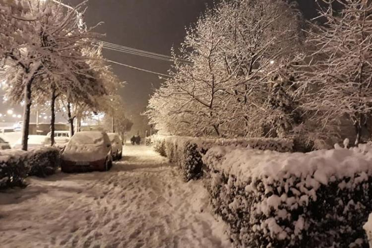 Boc: Zăpada căzută nu paralizează orașul