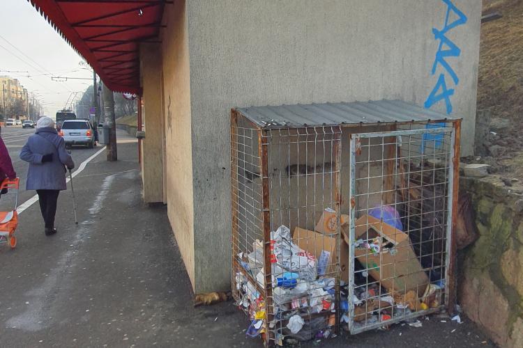 Șobolani în gunoiul de lângă stația de autobuz din Mănăștur, strada Primăverii - VIDEO cititor EXCLUSIV