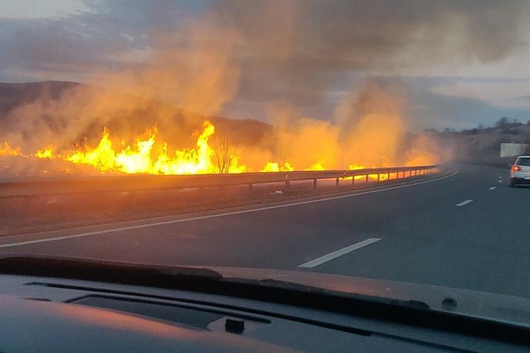 Un piroman a dat foc stufărișului de la Mera. Înceope sezonul de primăvară - FOTO