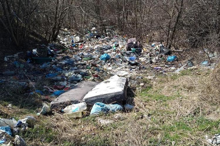 15 tone de gunoaie adunate de pe traseul Centurii de Nord - FOTO