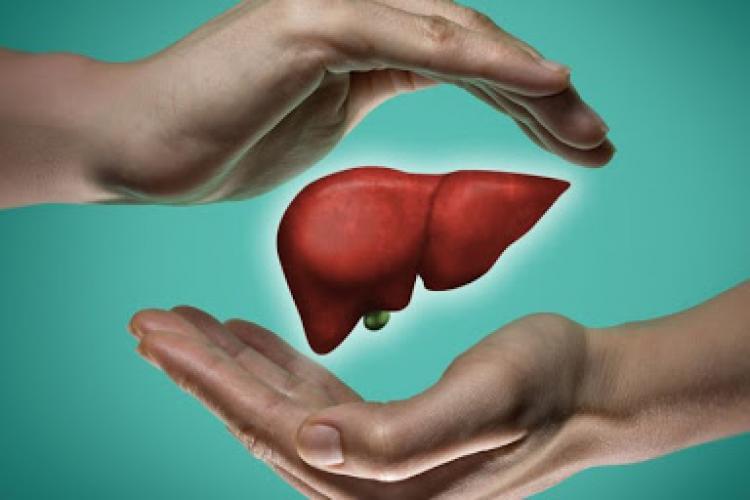 Ficat sănătos - Sfaturi de AUR pentru sănătatea ficatului. Ce alimente să consumi