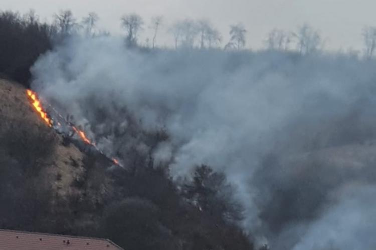 S-a aprins pădurea din Florești, de la un foc pus de un necunoscut - FOTO - VIDEO Cititor