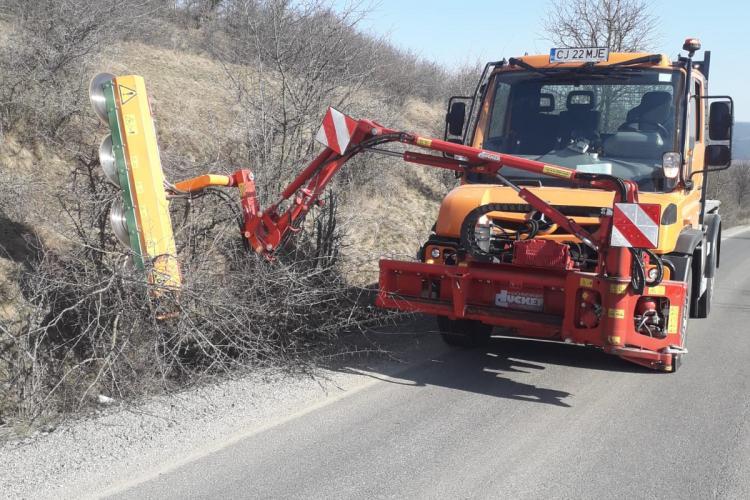 În sfârșit se tund copacii de pe drumurile județene din Cluj - FOTO