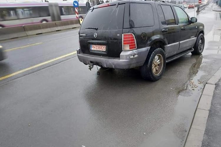 Patru câini ținuți într-o mașină în Florești, pe marginea drumului. Proprietarul spune că sunt bine (Audio)