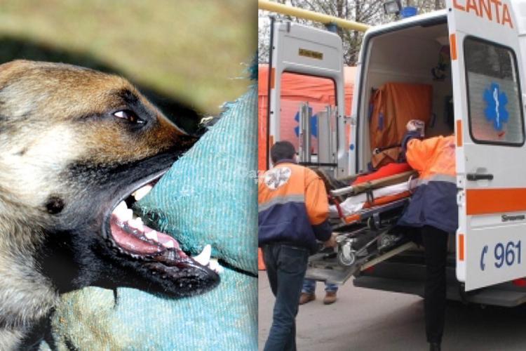Copil mușcat de un câine în Parcul Central din Cluj-Napoca