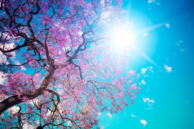 METEO. Prognoza meteo 30 martie - 11 aprilie 2021. Vom avea parte de un fenomen neobișnuit