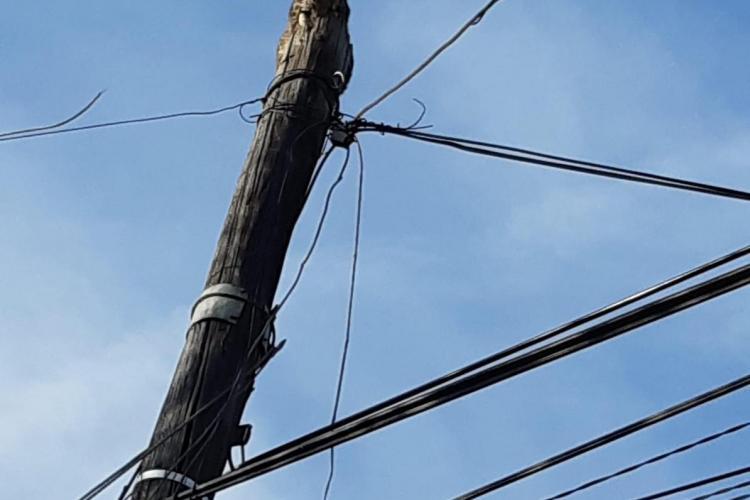 De ce nu au intervenit pompierii la pisica urcată pe stâlp în Baciu - FOTO