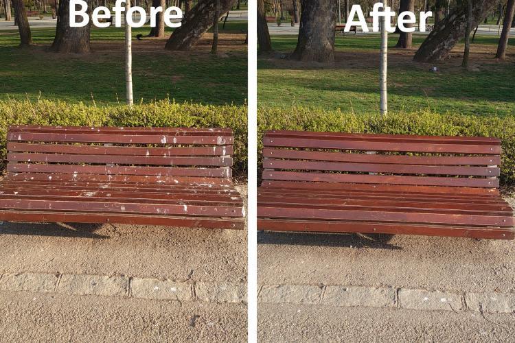 Un clujean a spălat o bancă din Parcul Central, plină de excremente de pasăre. Lecție predată celor de la Spații Verzi - FOTO