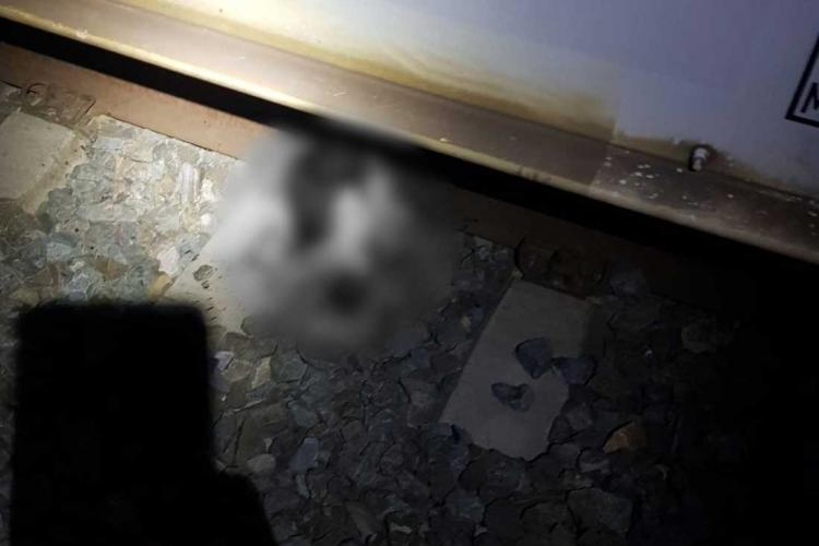 Accident de tren cu detalii șocante! Un bărbat a fost decapitat - FOTO