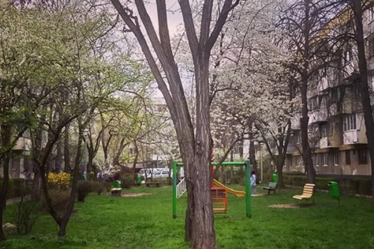"""Cum au ajuns """"blocurile comuniste"""" din Gheorgheni modele de urbanism în 2021? - FOTO"""