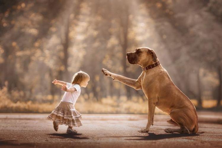 """Război între mame și iubitorii de câini: """"Dacă câinele meu îl mușca, eram în belele mari"""""""