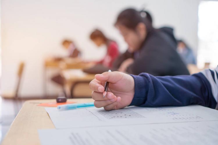 """Dana Tufeanu, învățătoare: """"Mă declar oripilată de subiectele de la Limba Română, la Evaluarea Națională pentru clasa a IV-a"""""""