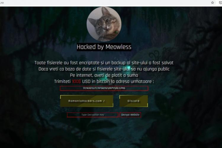 Gest umanitar! Un clujean oferă arhiva site -ului Consiliului Județean Cluj, atacat de hackeri