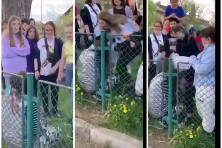 Fetiță fără apărare, BĂTUTĂ și UMILITĂ de colegele ei într-un loc de joacă. Imagini revoltătoare - VIDEO