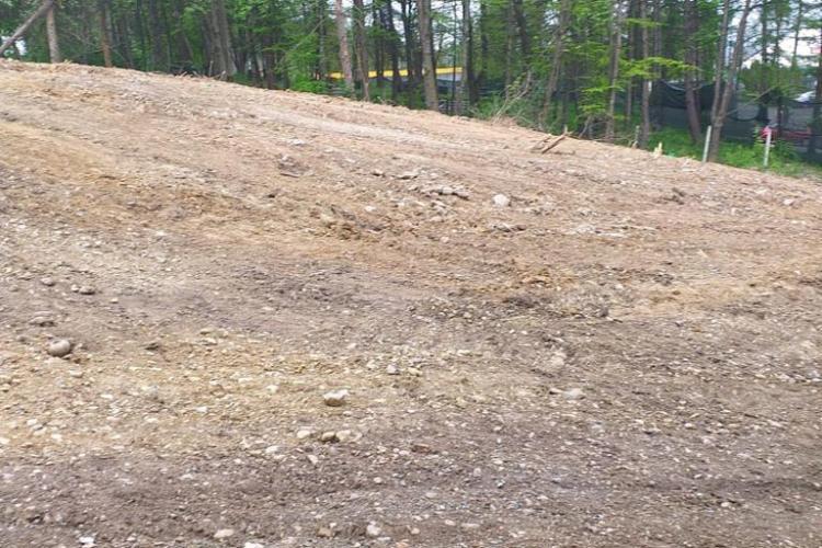 Proprietar de teren, reclamat că a tăiat vegetația pe un teren de lângă Baza Unirea, din Mănăștur - FOTO