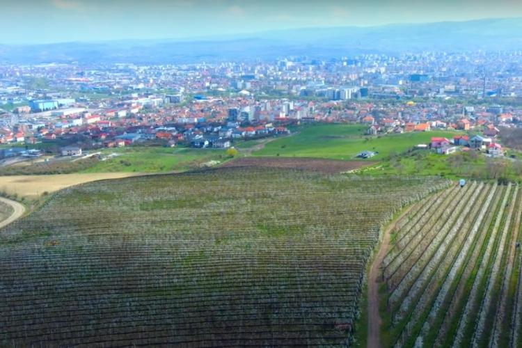 Boc vrea un PUG metropolitan: Primarii pot aproba blocuri de 20 de etaje la un metru de Cluj-Napoca