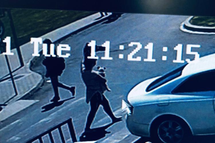 Hoață de căței filmată lângă Iulius Mall Cluj. Cine a văzut ceva? - FOTO și VIDEO