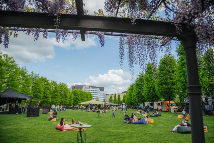 De 1 iunie, copiii sunt așteptați în Iulius Parc la Bimbo Party, pentru a sărbători Ziua Copilului
