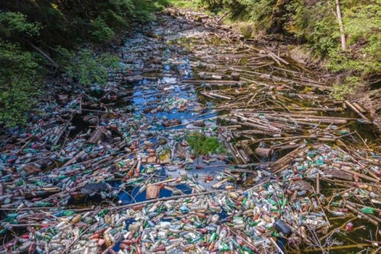 Lacul Beliș e afectat GRAV de dezvoltarea turismului în zonă. Gunoaiele au acoperit luciul de apă - FOTO