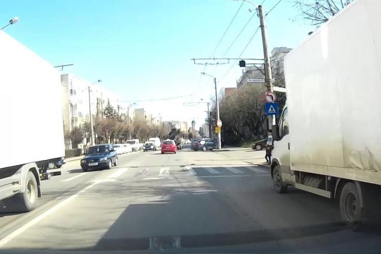 Cluj: Câine în lesă, lovit pe trecere de pietoni în Gheorgheni. Poliția susține că proprietarul e de vină