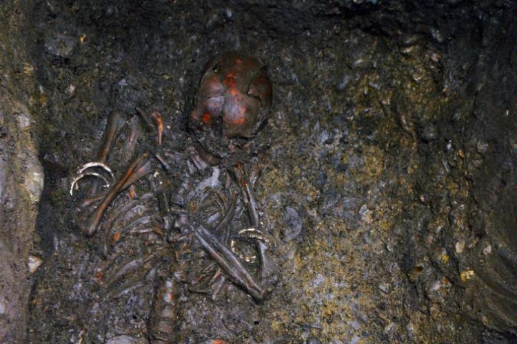 Mormânt preistoric descoperit în centrul Clujului, într-un beci din Piața Unirii - VIDEO