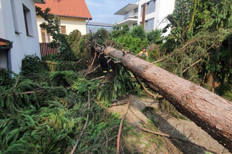 Dan Tarcea: Duminică seara a fost un ochi de furtună, a fost un fel de tornadă. Brazii au fost rupți