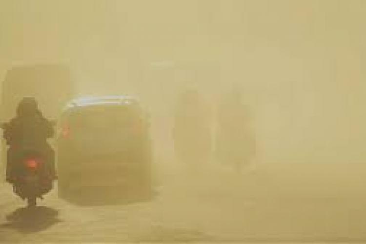 Bestia Africană, cel mai mare val de caniculă şi praf saharian, a pătruns în țară. România se sufocă la aproape 40 de grade la umbră