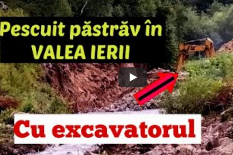 Cum distrug șmecherii cu bani și râul Iara! Strigătul de disperare al unui pescar de pe VALEA IERII ajuns la capătul răbdării - VIDEO