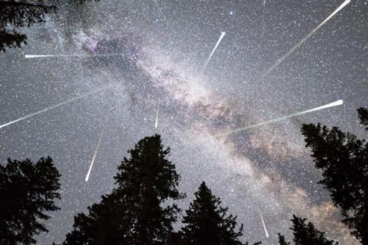 """Perseide 2021. Ploaie de stele în noaptea de joi: """"Nu prea contează în ce direcție priviți, cât timp nu vă uitați la telefon"""""""