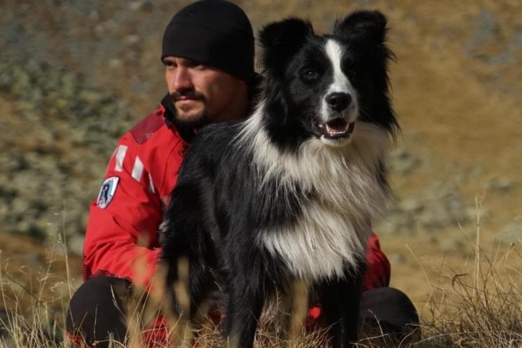 Singurul câine de salvare montană, lovit cu piciorul de o turistă și aruncat în jnepeni