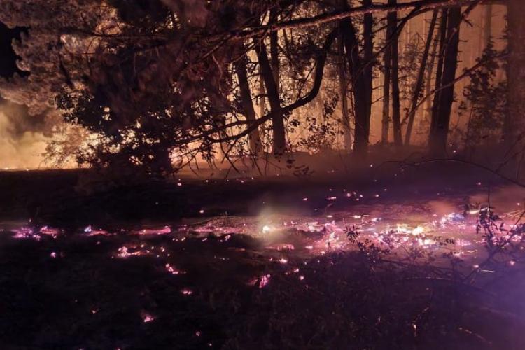 Incendiu de pădure, întins pe 2.000 mp, în comuna Inuri, județul Alba - FOTO/VIDEO