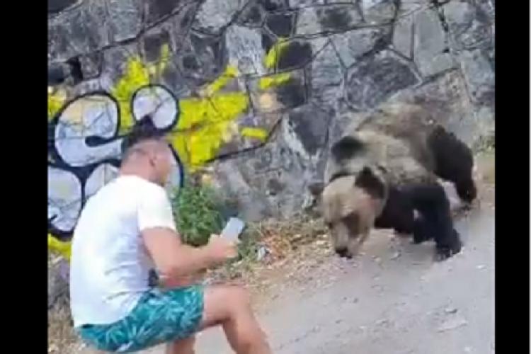 Bărbat la un pas să fie luat în gheare de un urs, deranjat de pozele făcute: Bă ești prost rău de tot! - VIDEO