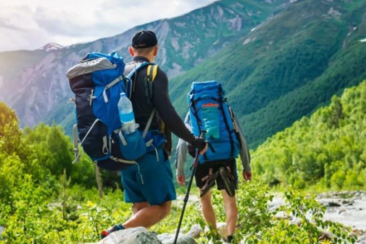Mergem la munte și ne întâlnim cu ursul. Ce facem? 11 sfaturi utile oferite de Salvamont România