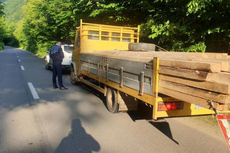 Cluj: Hoții de lemne lovesc din nou! Zeci de mii de lei amendă pentru furtul de lemne - FOTO