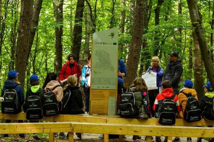 Pădurea-parc Făget, un nou spațiu de relaxare lângă Cluj-Napoca