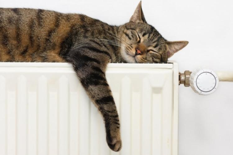 Ajutor încălzire 2021. Acte necesare şi procedura de depunere a cererii